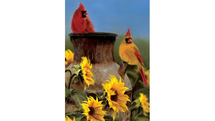 CARDINAL ET TOURNESOL ( GRAND 28X40)