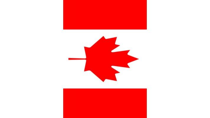 DRAPEAU DU CANADA (GRAND 28X40)