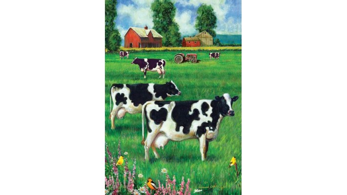 LE CHAMPS DE VACHES ( GRAND 28X40)